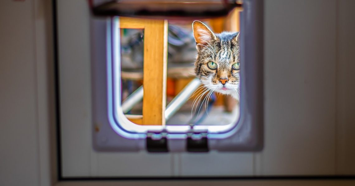 chatière connectée